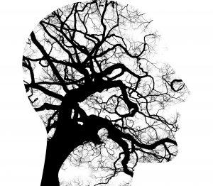 Suspension de l'application de la circulaire sur l'exemption de la TVA dans le domaine de la psychologie, de l'orthopédagogie et de la psychothérapie